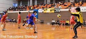 県高校総体が開幕し、熱戦を繰り広げるハンドボールの選手たち=鳴門アミノバリューホール