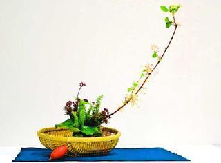 薬草と野花、秋らしく 徳島大植物園で「雑草いけばな展」 10月7日から