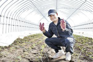 「2月に入ってなると金時の育苗が始まりました」と杉本さん。