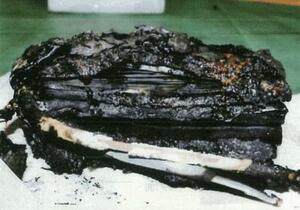 消防の火災調査報告書に添付された、発火したモバイルバッテリーの写真(加藤尚徳さん提供)