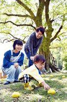 笹見のムクノキ周辺に展示されている作品「レモンの木」=牟岐町河内