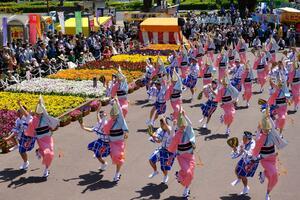 色とりどりの花で彩られたエントランスステージを華やかに舞う踊り子たち=2019年4月20日、徳島市の藍場浜公園