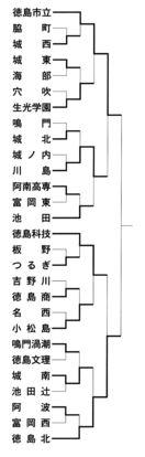 決勝は徳島市立対徳島北 全国高校サッカー県大会