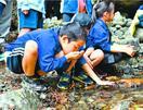 那賀川流域の安全を祈願し児童らが源流碑開き 徳島