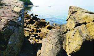 波静かな田尻浜。石が転がる浜と地層の露頭が作り出す光景を楽しめる=鳴門市瀬戸町