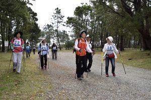 2本のポールを手に大里松原を歩く参加者=海陽町大里