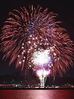小松島港まつりのフィナーレを飾った花火=小松島市の新港岸壁