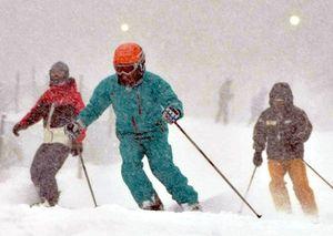 新雪の上を滑るスキーヤーやスノーボーダー=三好市井川町の井川スキー場腕山
