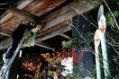 鷲の門にしめ飾り 徳島市の徳島中央公園、迎春準備整う