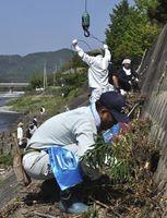 雑草を刈ったり流木を重機で引き上げたりする社員たち=徳島市入田町