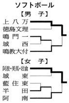 徳島県中学総体 ソフトボールの結果(2018年7月16日)