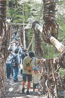 観光客でにぎわう祖谷のかずら橋=三好市西祖谷山村