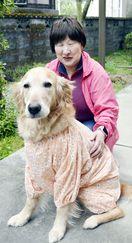 盲導犬に余生送る場を 徳島の育てる会、引き取り先募る