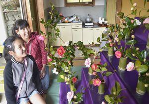ひな壇に飾られたツバキを楽しむ来場者=美波町木岐の木岐椿公園