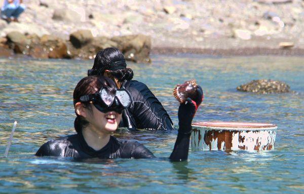 海女漁を体験する参加者=美波町の伊座利沖