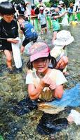 アユを捕まえて喜ぶ児童=小松島市田浦町の勝浦川