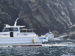 津波避難訓練で磯釣り客を乗せる渡船=牟岐町沖の牟岐大島