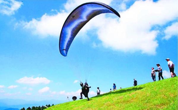 勝浦フライトパークで開かれたパラグライダー大会=勝浦町三渓