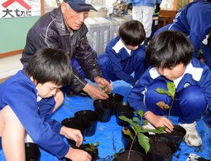 工地地区自主防災会会員の指導で、ドングリの苗をポットに移し替える平島小児童=同校