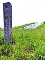 発掘調査が行われている土成丸山古墳=阿波市土成町高尾