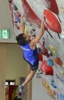 強化合宿でボルダリングの課題に挑む東京五輪代表の楢崎智亜=愛媛県西条市