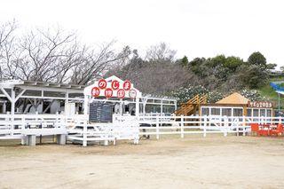 淡路島「のじま動物園」にポニーやヒツジが仲間入り ふれあい広場やキッチンカーを新設しリニューアル