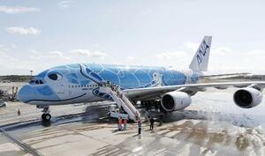 ウミガメが描かれた全日空のエアバスA380=2019年3月、成田空港