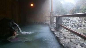 露天風呂で入浴する外国人観光客=三好市池田町松尾のホテル祖谷温泉(三好市提供)