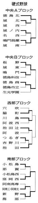 徳島県高校総体 硬式野球の試合結果(6月2日)