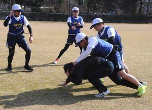 訓練で不審者役を取り押さえるエスコートポリス=徳島市の県警機動隊グラウンド