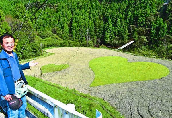 大小二つのハート模様が描かれている田んぼ=那賀町
