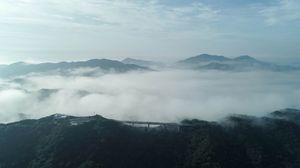 ウチノ海を覆う濃霧。手前は鳴門スカイライン=21日午前7時10分ごろ、鳴門市(小川さん提供、ドローンで撮影)