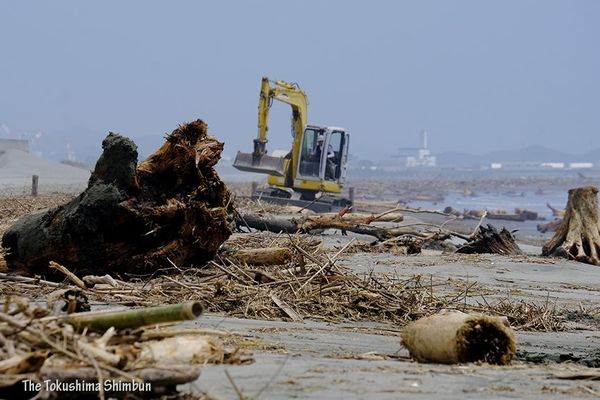 梅雨明けはしたが、海岸では大雨で漂着した流木の撤去作業が行われている=7月10日午前、徳島市の小松海岸