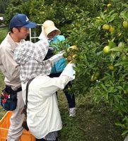 米田さん(左)からユズの収穫方法を教わる参加者=那賀町延野