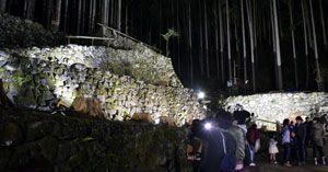 ライトを浴びて幻想的な雰囲気に包まれた「吉成家の石垣」=上勝町福原