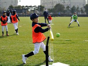 県小学生ティーボール選手権に出場し、プレーを楽しむ子どもたち=2月11日、鳴門球技場