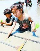 古代米の田植え、阿南で園児が体験