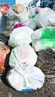 レジ袋などプラスチックの袋に入れて捨てられた家庭ごみ=徳島市内(画像の一部を加工しています)
