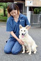 熊本市動物愛護センターから受け入れた譲渡候補犬「さやか」=神山町阿野の県動物愛護管理センター
