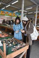 石井町産の野菜を品定めするツアー参加者=同町石井の百姓一