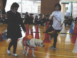 盲導犬を使った歩行体験をする児童(左)=阿波市の久勝小学校