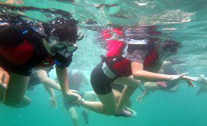 シュノーケリングをしながら海底のサンゴを眺める宍喰小児童=海陽町宍喰浦の竹ケ島海中公園