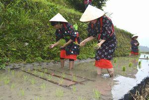 早乙女姿で田植えを体験する女性たち=上勝町生実の樫原の棚田
