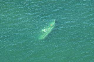 行方不明の漁船を海中で発見 乗船者は依然不明/徳島市