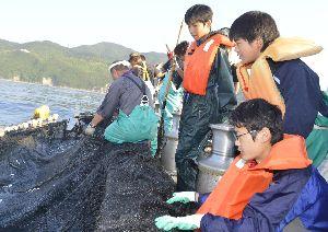 定置網漁の引き揚げを手伝う生徒ら=美波町の伊座利沖