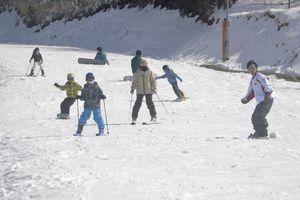今季最後の滑りを楽しむ来場者=三好市井川町の井川スキー場腕山