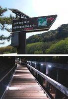 【上】県産スギとLEDを使った避難標識【下】LEDの光で照らされる避難誘導路=いずれも美波町田井(もくさん提供)