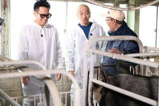 松本人志、『青空レストラン』にゲスト出演 体力勝負の養豚業に挑戦