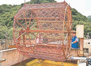 徳島のり採苗センターが開発したスジアオノリの種付けで使われる水車=鳴門市の同センター