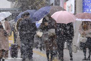 雪が降る中、傘をしっかり握って足早に通勤する人=17日午前8時半ごろ、徳島駅前